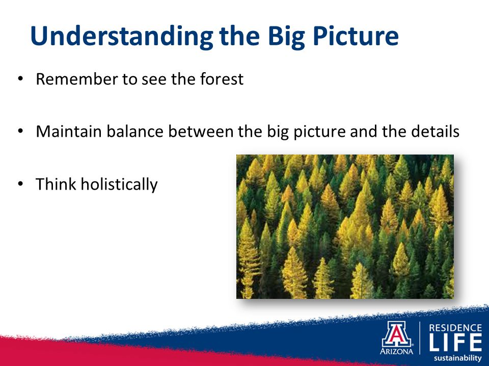 Understanding the Big Picture Remember to see the forest Maintain balance between the big picture and the details Think holistically