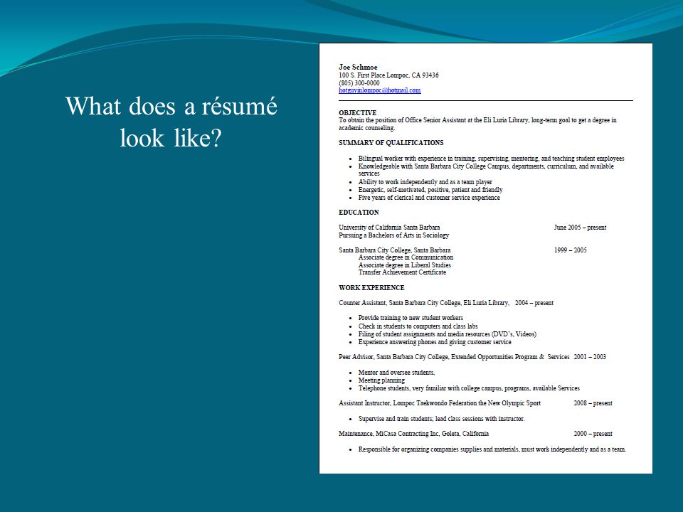 What does a résumé look like