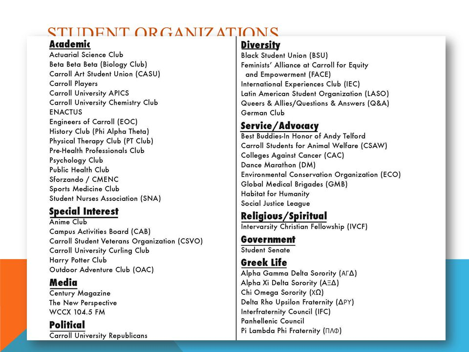 STUDENT ORGANIZATIONS Link to handbook  Or variety of pages on LMS (if separated)