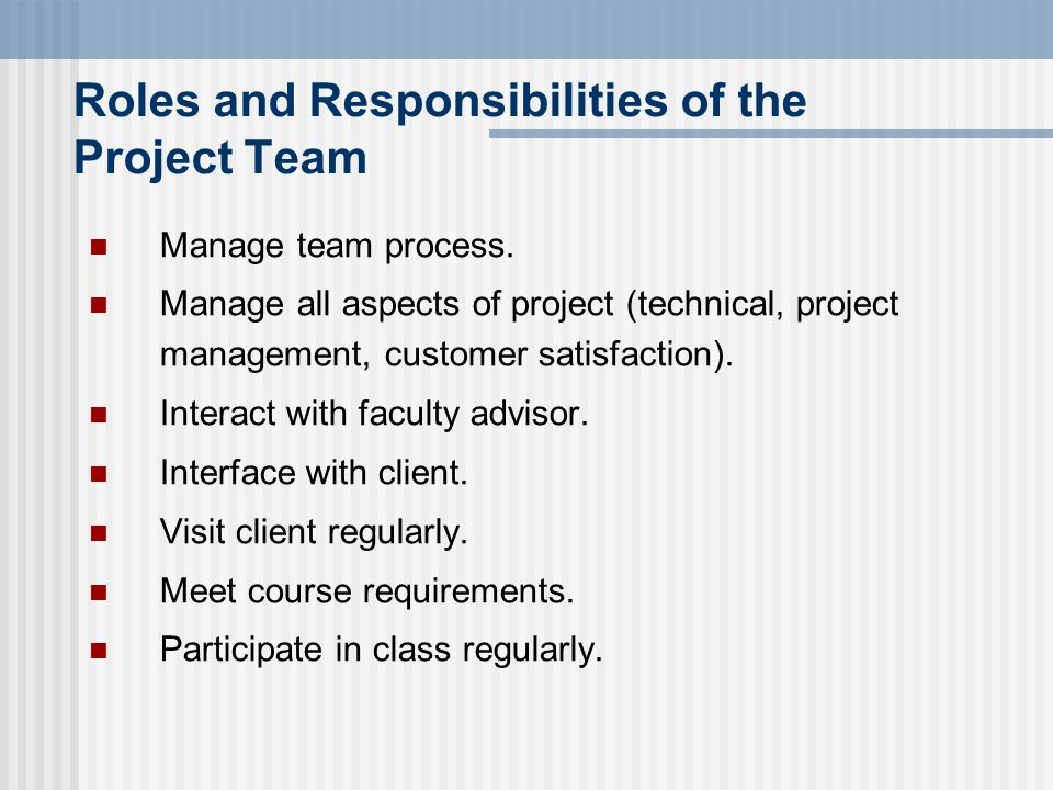 Roles and Responsibilities of the Project Team Manage team process.