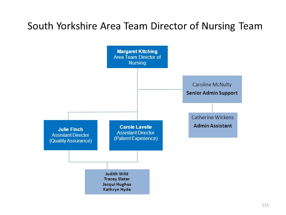 South Yorkshire Area Team Director of Nursing Team Margaret Kitching Area Team Director of Nursing Caroline McNulty Senior Admin Support Catherine Wic