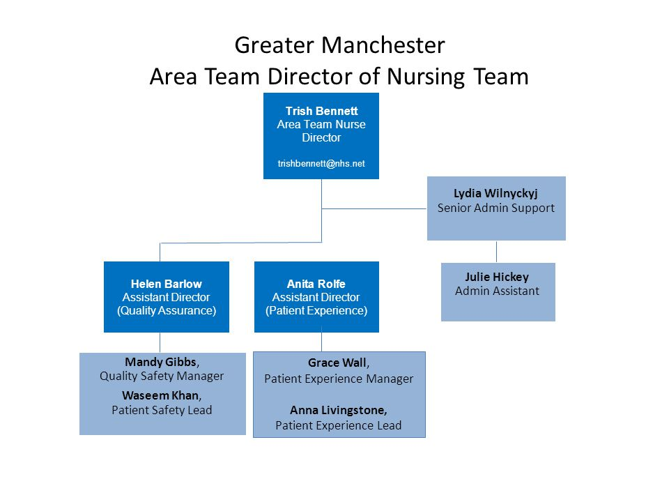 Greater Manchester Area Team Director of Nursing Team Lydia Wilnyckyj Senior Admin Support Julie Hickey Admin Assistant Helen Barlow Assistant Directo