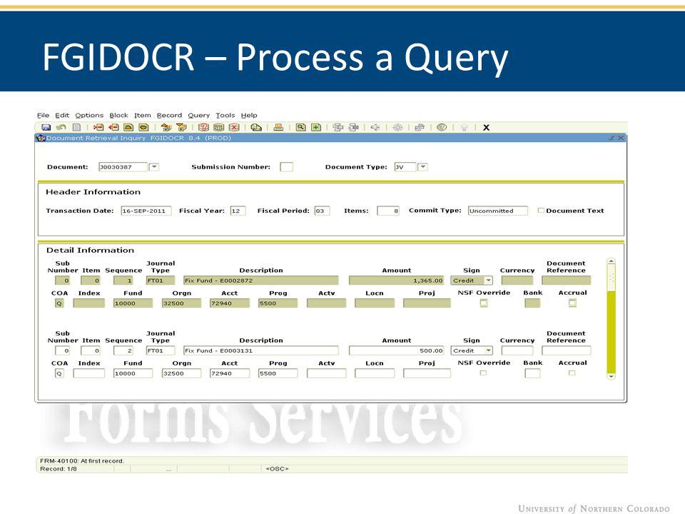 FGIDOCR – Process a Query