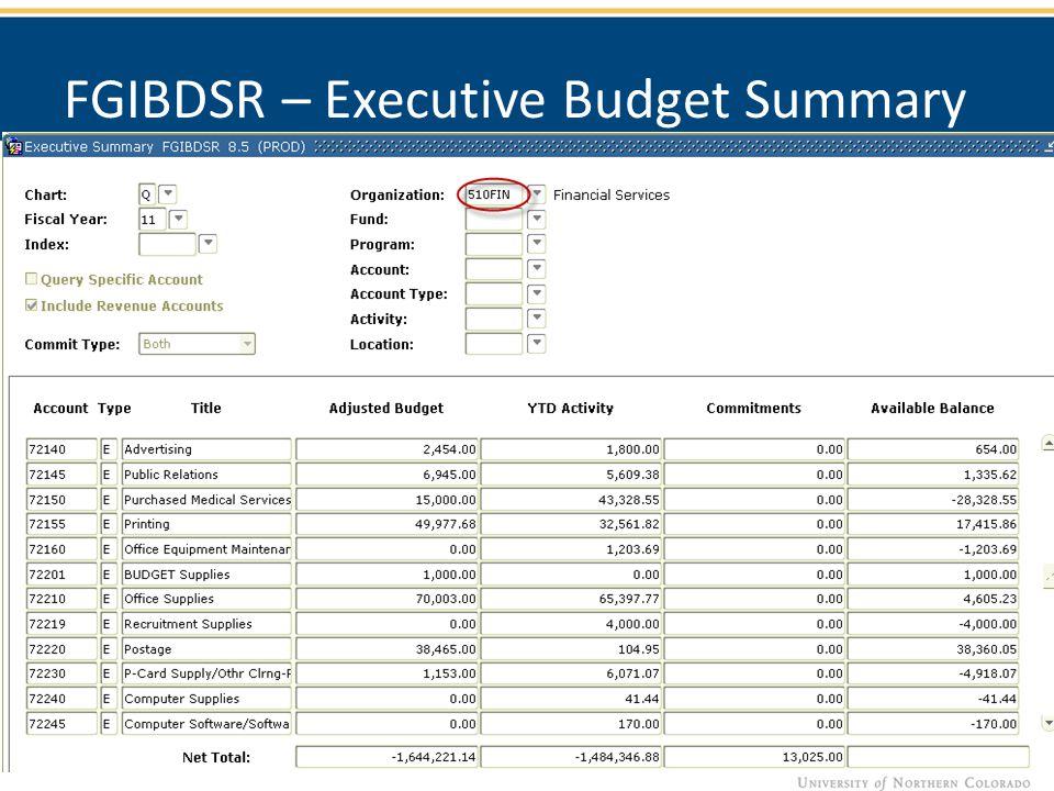 FGIBDSR – Executive Budget Summary