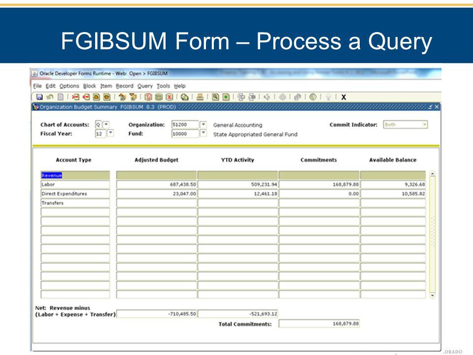 FGIBSUM Form – Process a Query