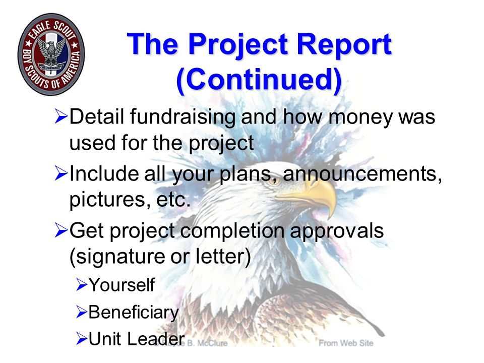 The Project Report (Continued)  Detail fundraising and how money was used for the project  Include all your plans, announcements, pictures, etc.
