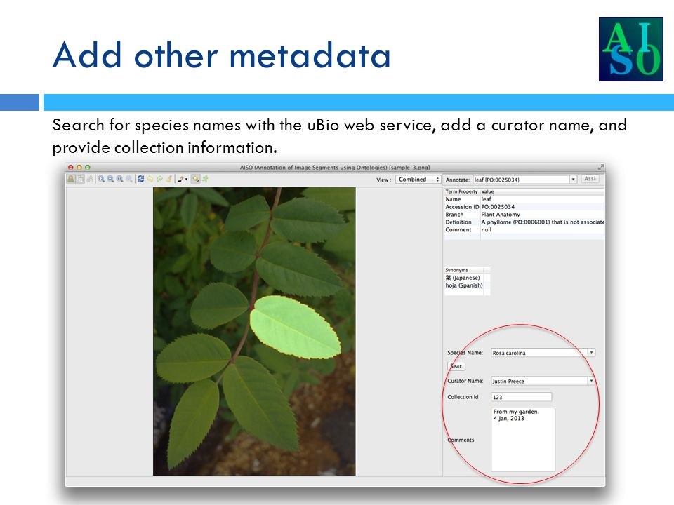 Add other metadata Search for species names with the uBio web service, add a curator name, and provide collection information.