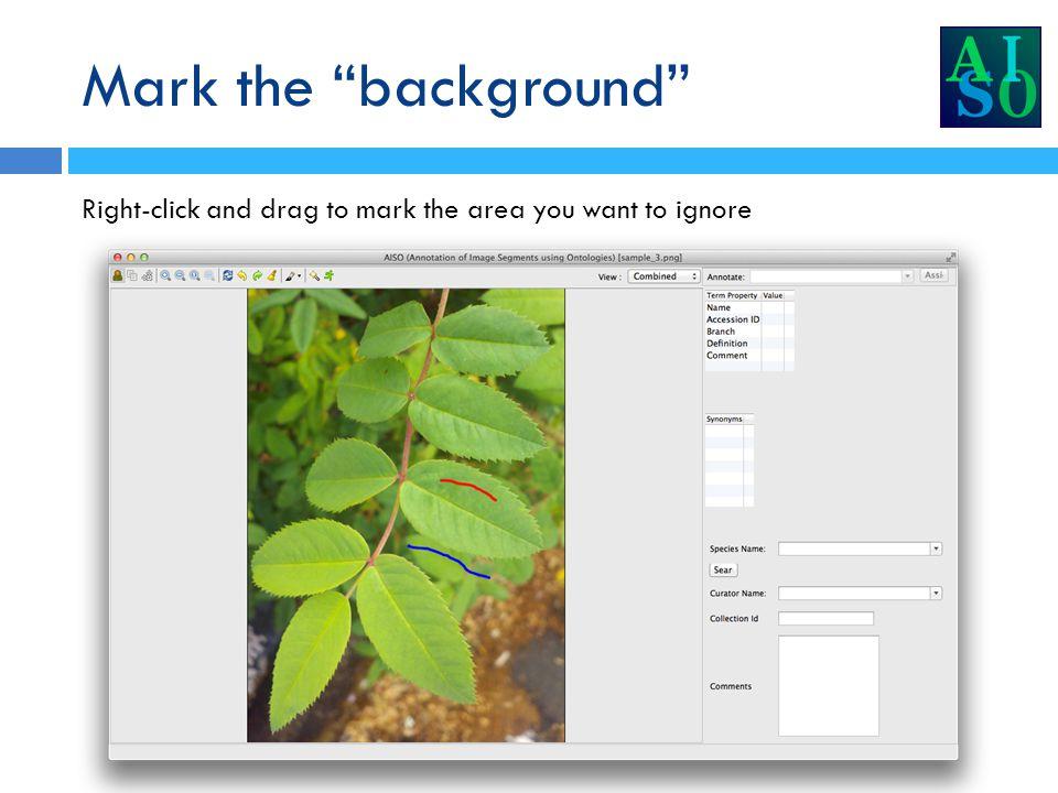 Interactive segmentation AISO processes your markup and segments the image