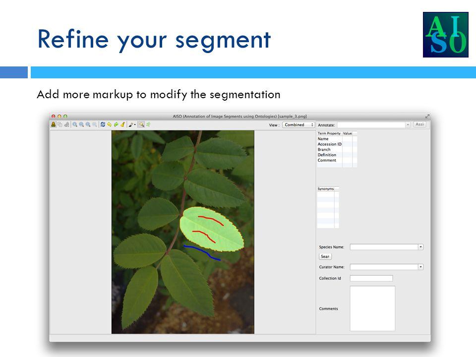 Form the segment Click the segment formation icon to accept the current segmentation