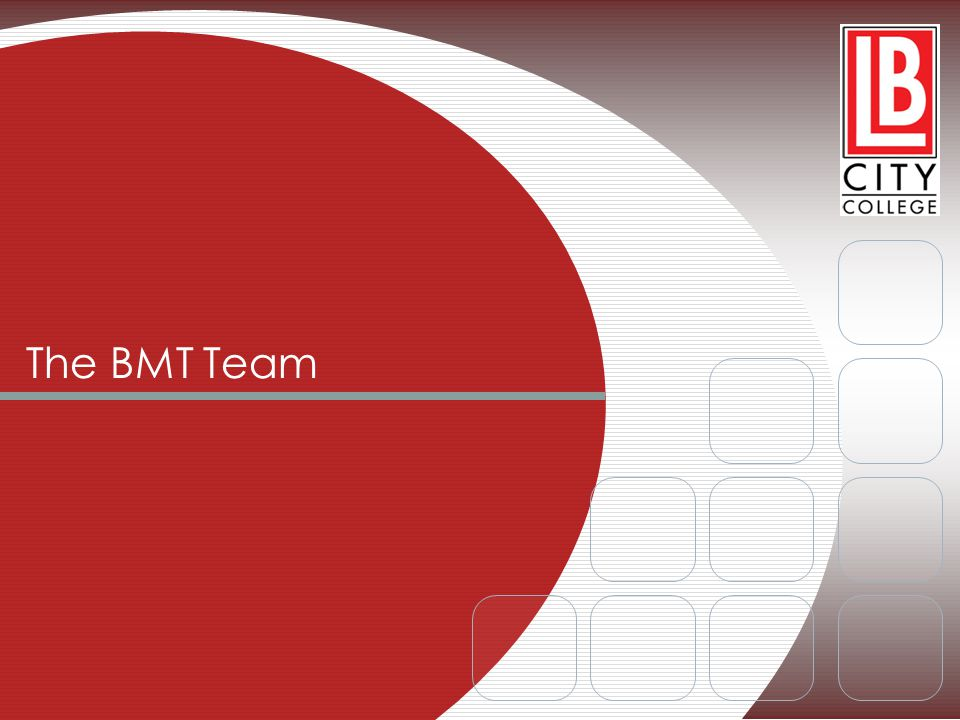 The BMT Team