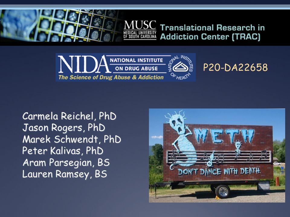 Carmela Reichel, PhD Jason Rogers, PhD Marek Schwendt, PhD Peter Kalivas, PhD Aram Parsegian, BS Lauren Ramsey, BS P20-DA22658