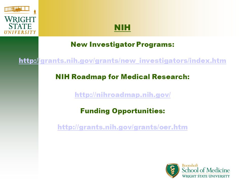 NIH New Investigator Programs: http://grants.nih.gov/grants/new_investigators/index.htm NIH Roadmap for Medical Research: http://nihroadmap.nih.gov/ Funding Opportunities: http://grants.nih.gov/grants/oer.htm http://grants.nih.gov/grants/new_investigators/index.htm http://nihroadmap.nih.gov/ http://grants.nih.gov/grants/oer.htm