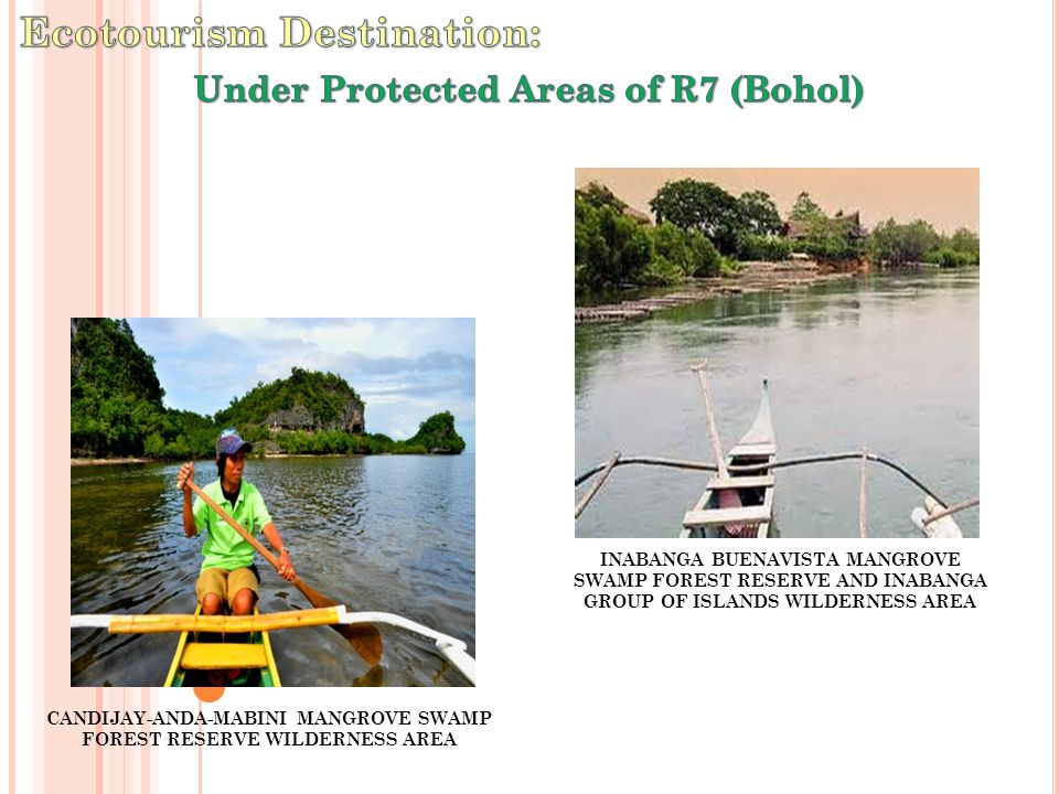 CANDIJAY-ANDA-MABINI MANGROVE SWAMP FOREST RESERVE WILDERNESS AREA INABANGA BUENAVISTA MANGROVE SWAMP FOREST RESERVE AND INABANGA GROUP OF ISLANDS WILDERNESS AREA