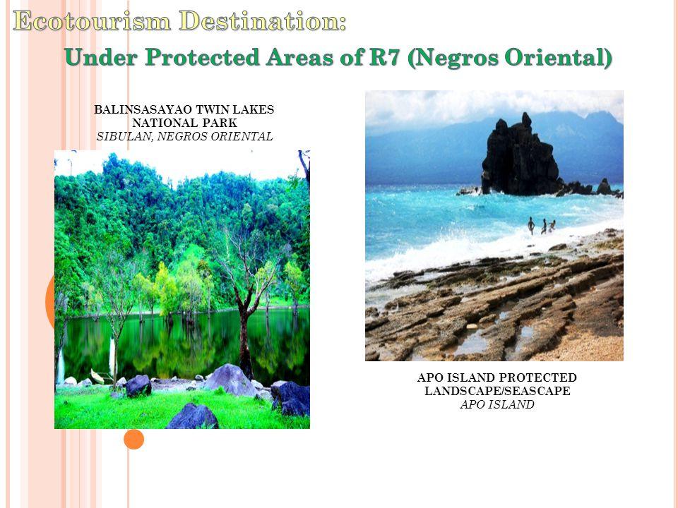 BALINSASAYAO TWIN LAKES NATIONAL PARK SIBULAN, NEGROS ORIENTAL APO ISLAND PROTECTED LANDSCAPE/SEASCAPE APO ISLAND