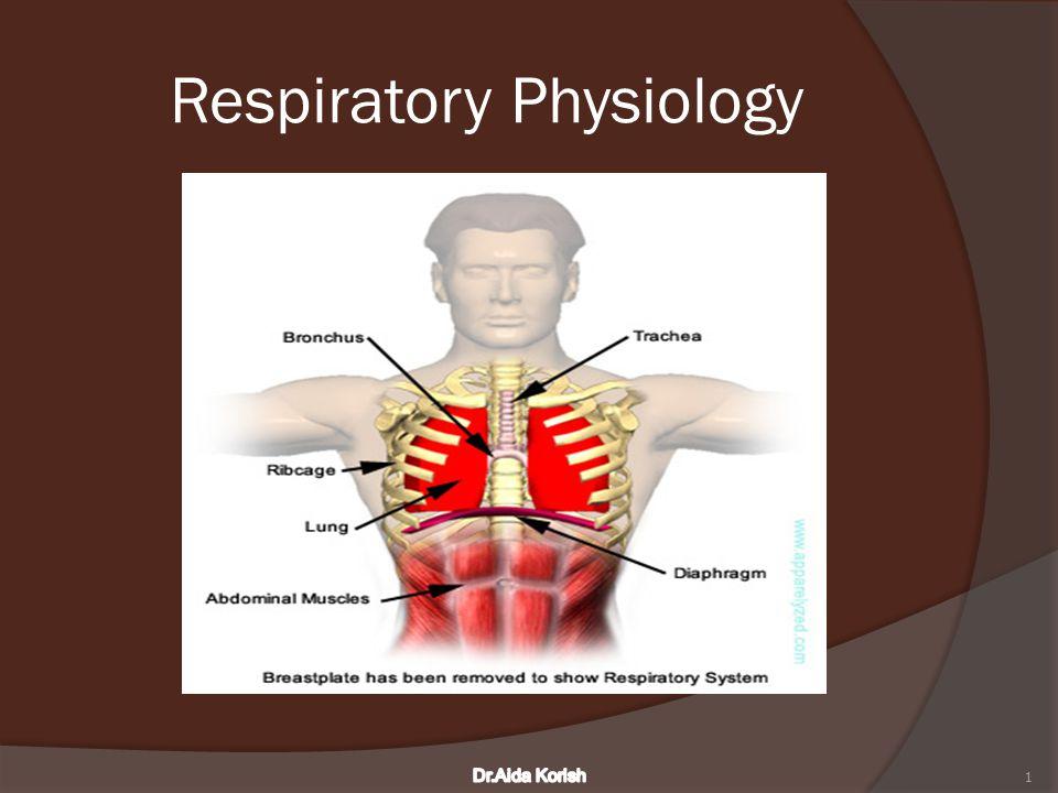 Respiratory Physiology 1