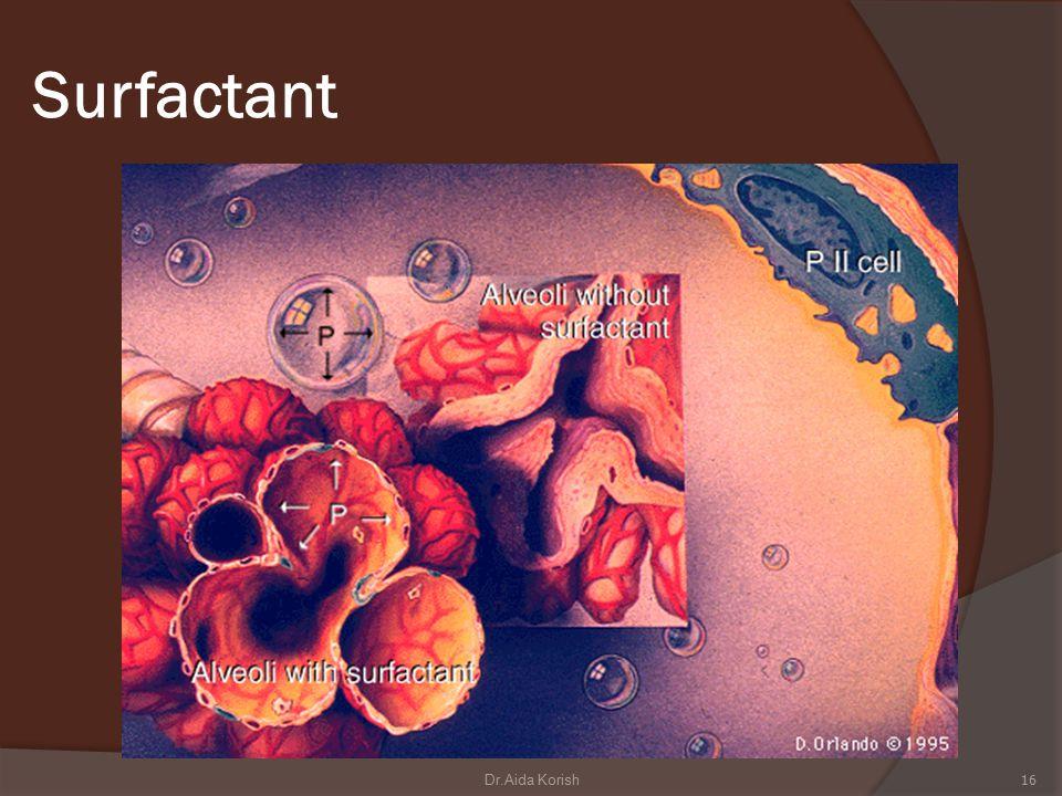 Surfactant 16Dr.Aida Korish