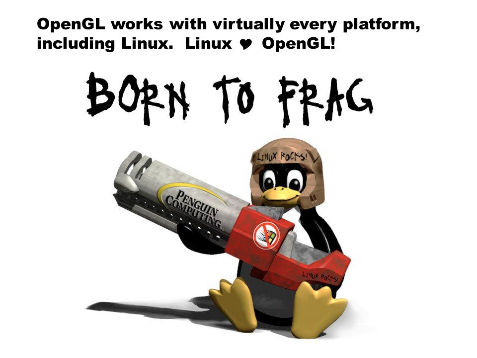 OpenGL works with virtually every platform, including Linux. Linux  OpenGL!