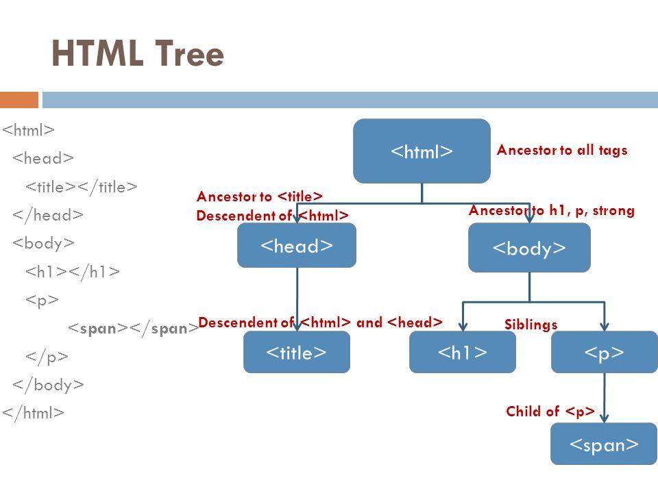HTML Tree Ancestor to all tags Ancestor to h1, p, strong Siblings Child of Descendent of Descendent of and Ancestor to