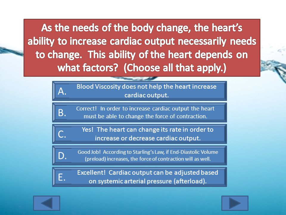 A. Blood Viscosity B. Cardiac Contractility C. Heart Rate D.