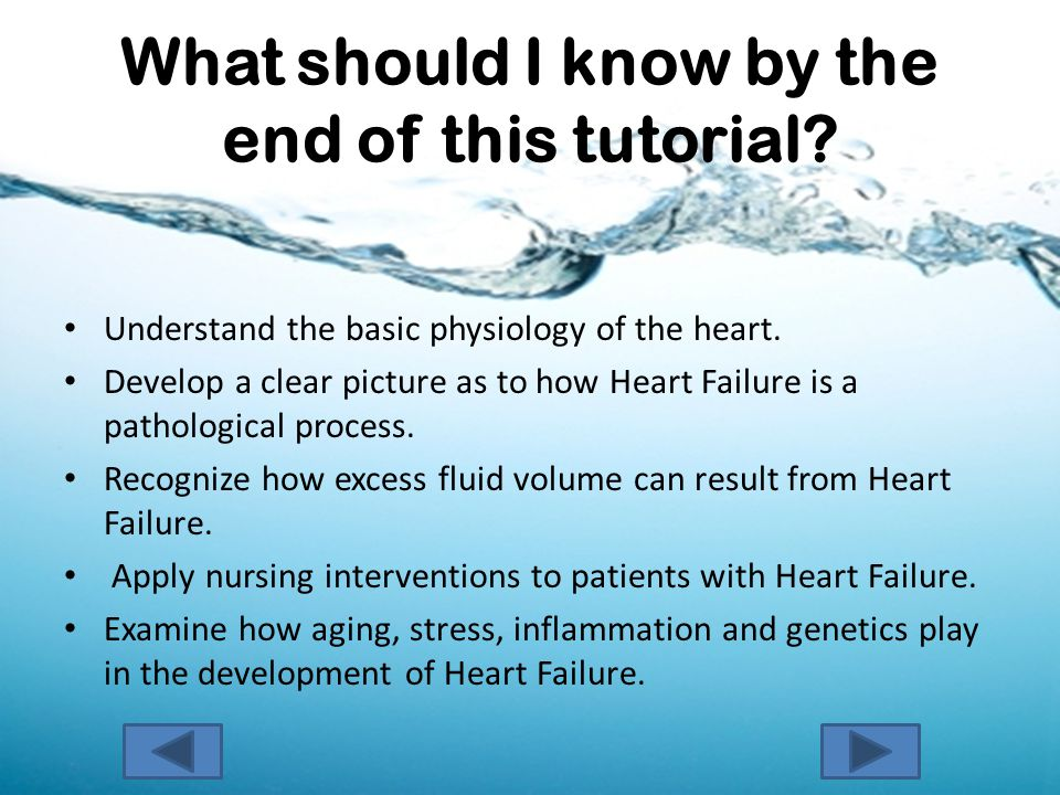 What should I know by the end of this tutorial. Understand the basic physiology of the heart.