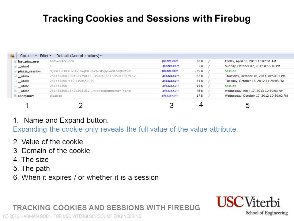 Tracking Cookies and Sessions with Firebug TRACKING COOKIES AND SESSIONS WITH FIREBUG 123 4 5 1.Name and Expand button.