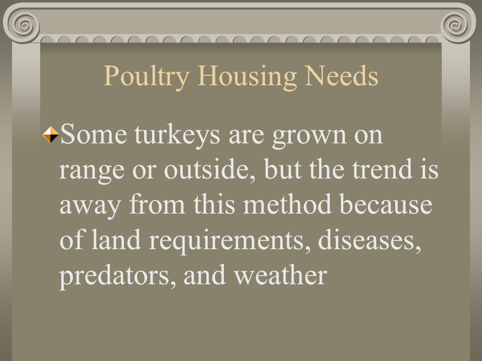 Poultry Housing Needs Some turkeys are grown on range or outside, but the trend is away from this method because of land requirements, diseases, predators, and weather
