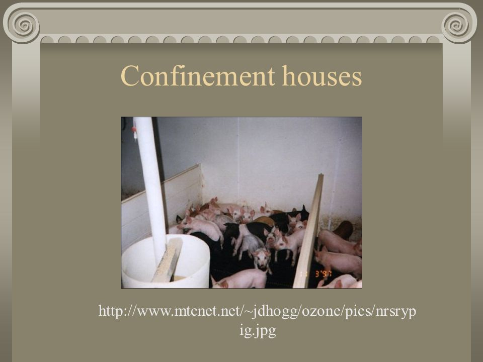 Confinement houses http://www.mtcnet.net/~jdhogg/ozone/pics/nrsryp ig.jpg
