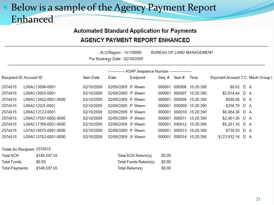 Below is a sample of the Agency Payment Report Enhanced 53