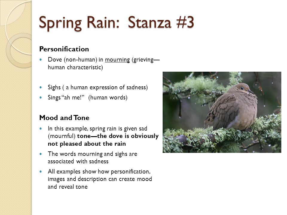 "Spring Rain: Stanza #3 Personification Dove (non-human) in mourning (grieving— human characteristic) Sighs ( a human expression of sadness) Sings ""ah"