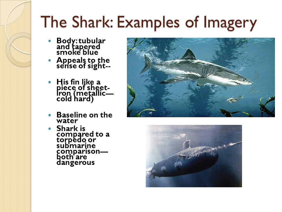 The Shark: Examples of Imagery Body: tubular and tapered smoke blue Appeals to the sense of sight-- His fin like a piece of sheet- iron (metallic— col