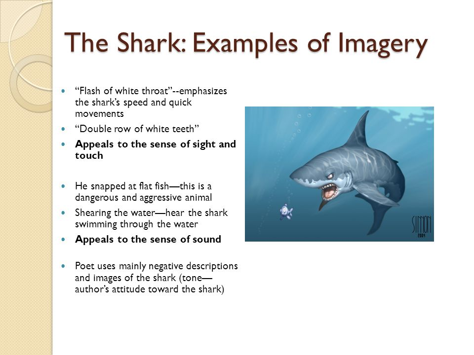 "The Shark: Examples of Imagery ""Flash of white throat""--emphasizes the shark's speed and quick movements ""Double row of white teeth"" Appeals to the se"