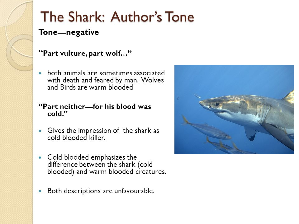 "The Shark: Author's Tone Tone—negative "" Part vulture, part wolf…"" both animals are sometimes associated with death and feared by man. Wolves and Bird"