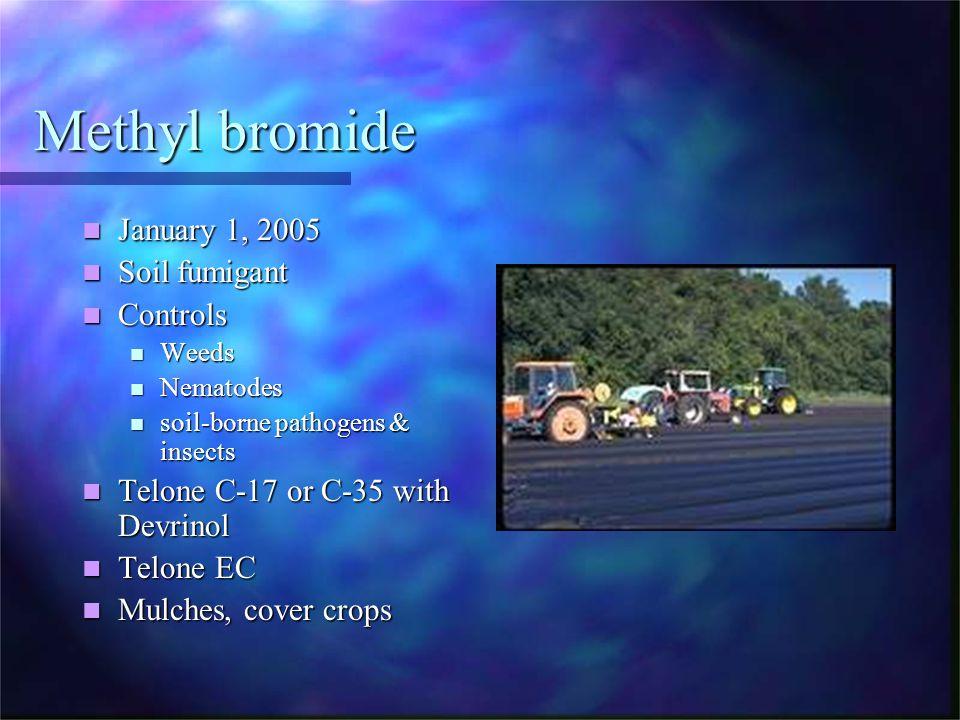 Methyl bromide January 1, 2005 January 1, 2005 Soil fumigant Soil fumigant Controls Controls Weeds Weeds Nematodes Nematodes soil-borne pathogens & in