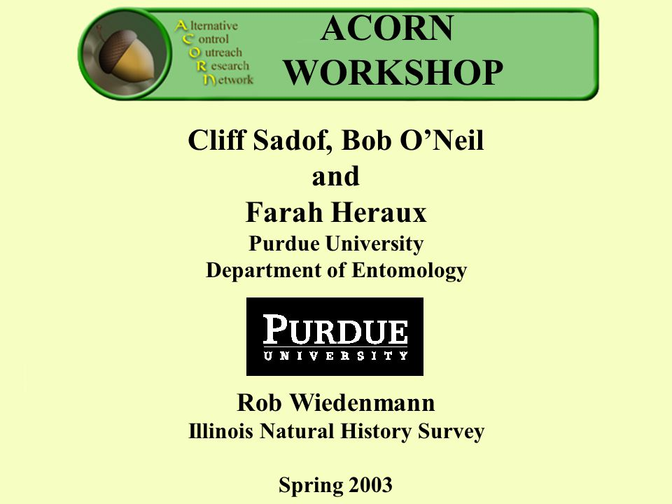 ACORN WORKSHOP Cliff Sadof, Bob O'Neil and Farah Heraux Purdue University Department of Entomology Rob Wiedenmann Illinois Natural History Survey Spring 2003 ACORN workshopACORN workshop