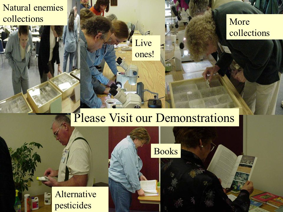 Break Please Visit our Demonstrations Books Alternative pesticides Natural enemies collections Live ones.
