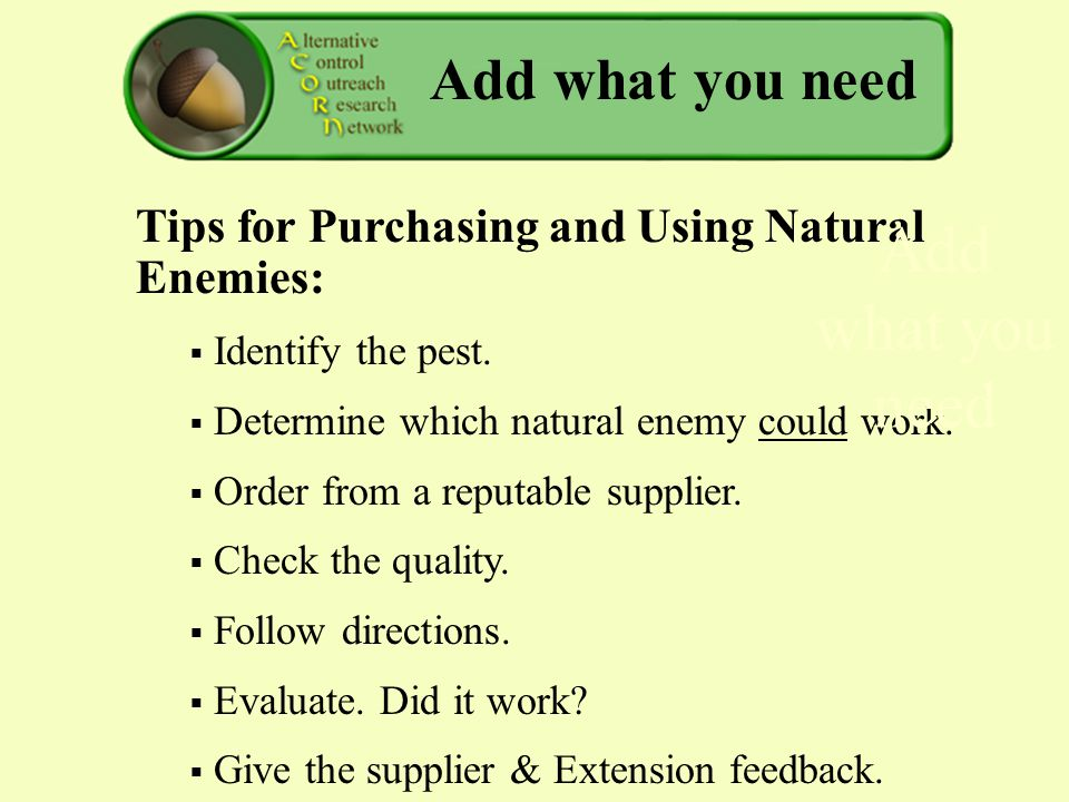 Add what you need Tips for Purchasing and Using Natural Enemies:  Identify the pest.