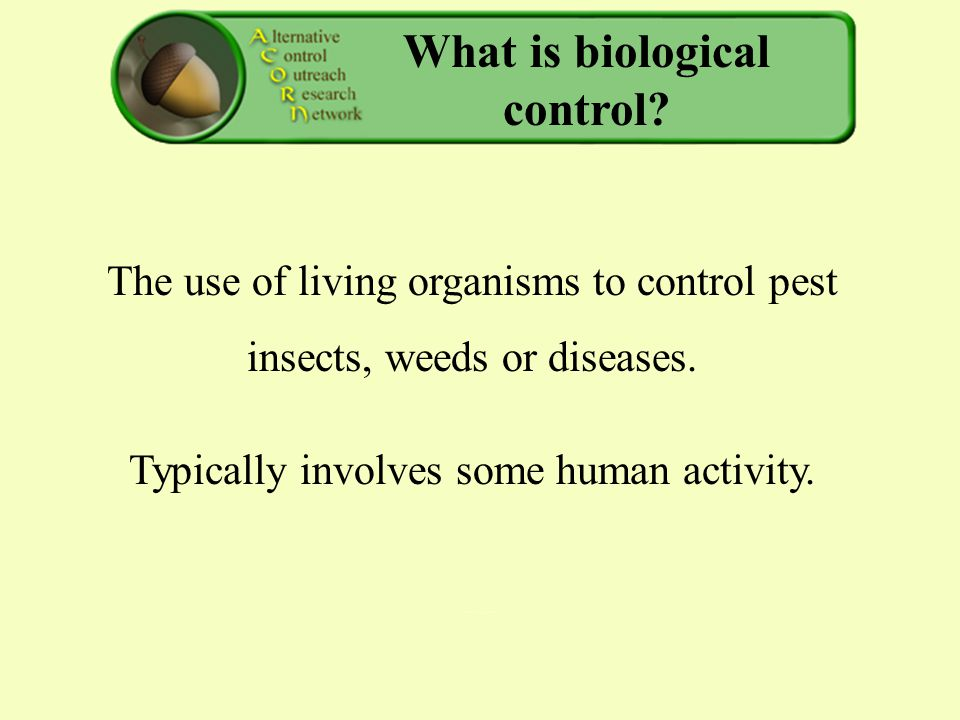 What is biological control. The use of living organisms to control pest insects, weeds or diseases.
