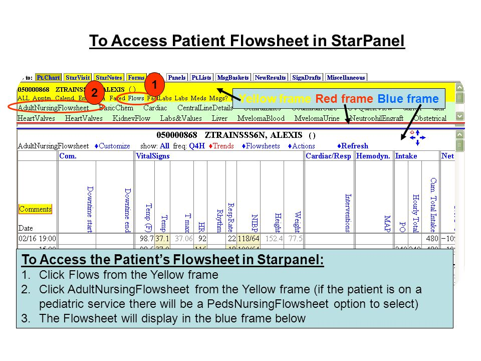 To Access Patient Flowsheet in StarPanel To Access the Patient's Flowsheet in Starpanel: 1.Click Flows from the Yellow frame 2.Click AdultNursingFlows