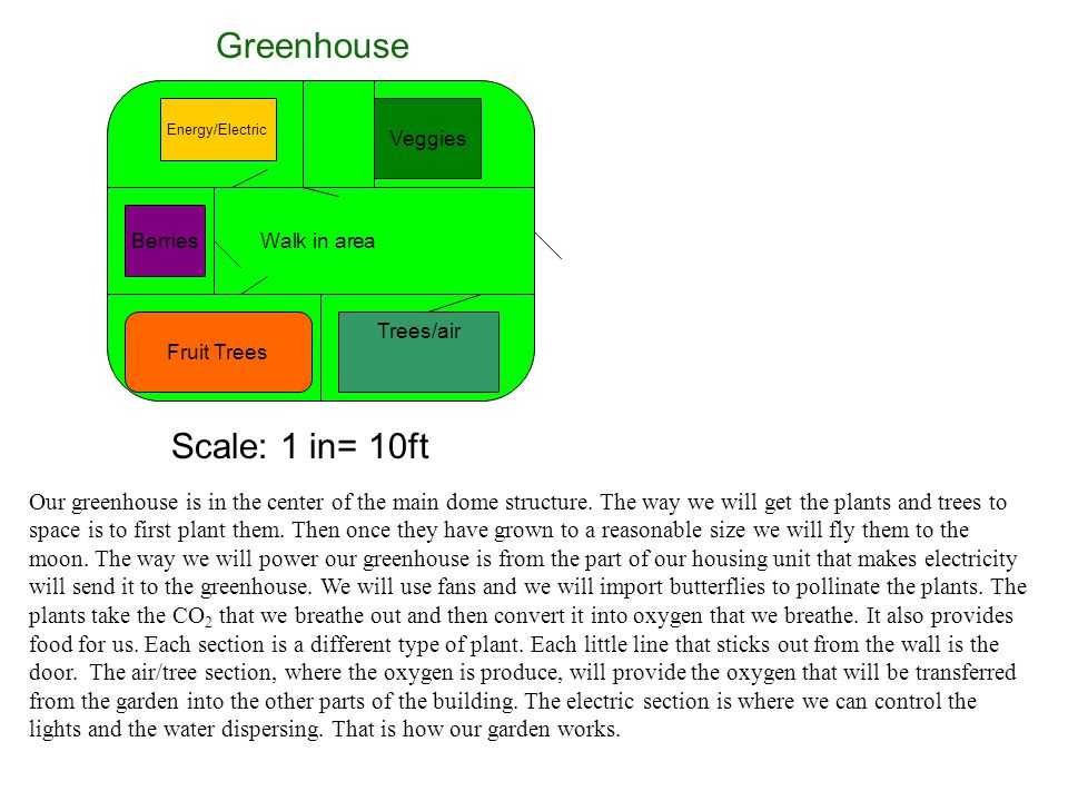 Walk in area Veggies Energy/Electric Berries Fruit Trees Trees/air Scale: 1 in= 10ft Greenhouse Our greenhouse is in the center of the main dome struc