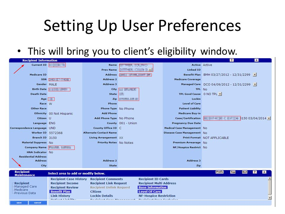 Setting Up User Preferences This will bring you to client's eligibility window.