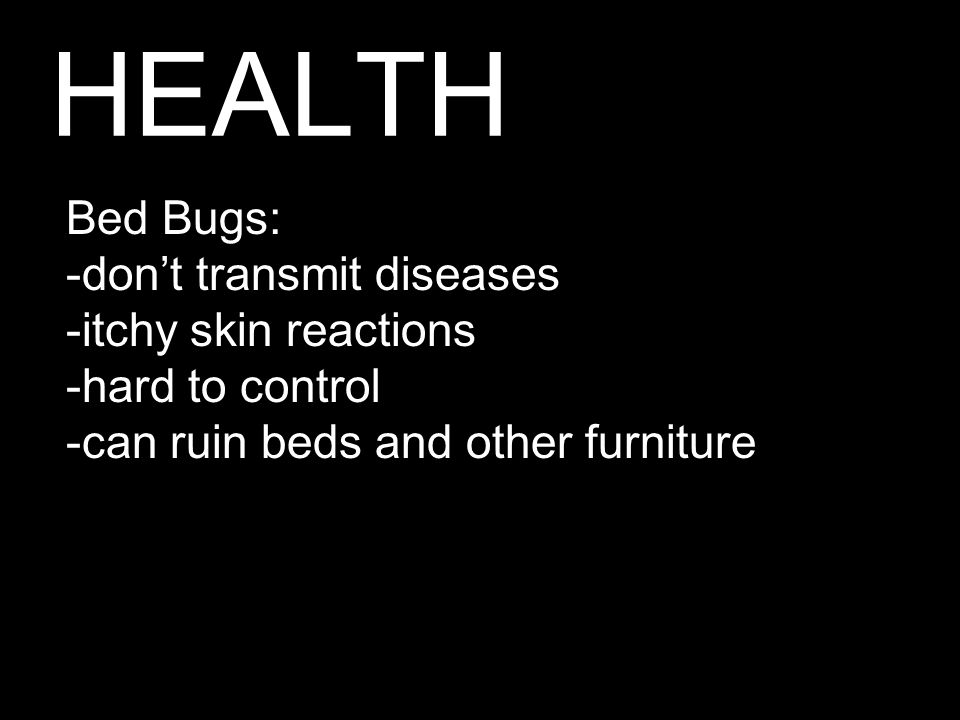 HEALTH Bed Bugs: -don't transmit diseases -itchy skin reactions -hard to control -can ruin beds and other furniture