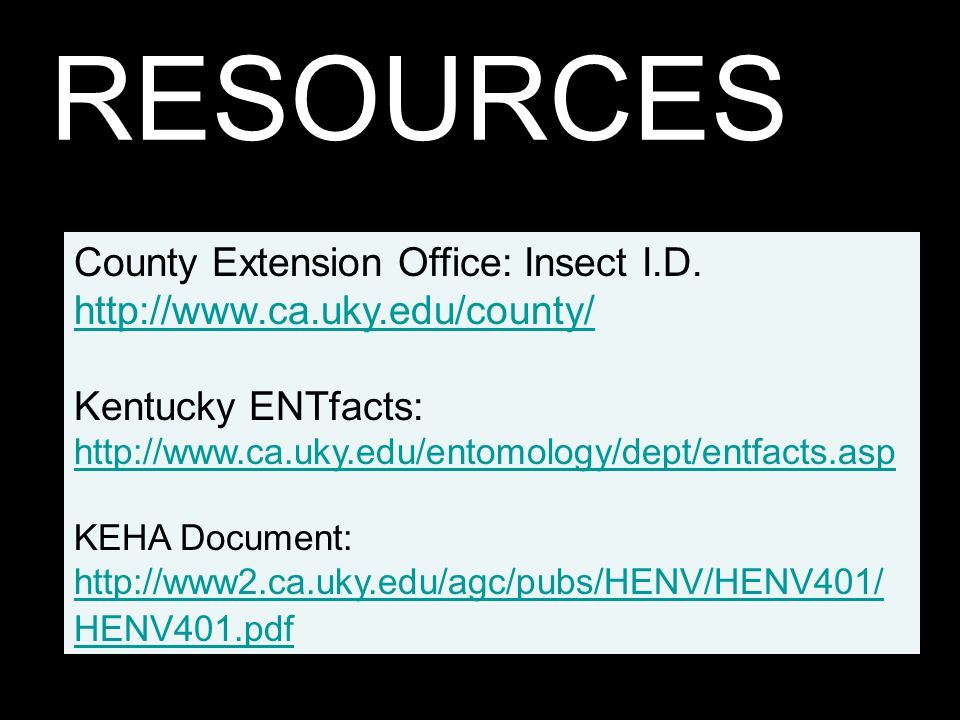 RESOURCES County Extension Office: Insect I.D.