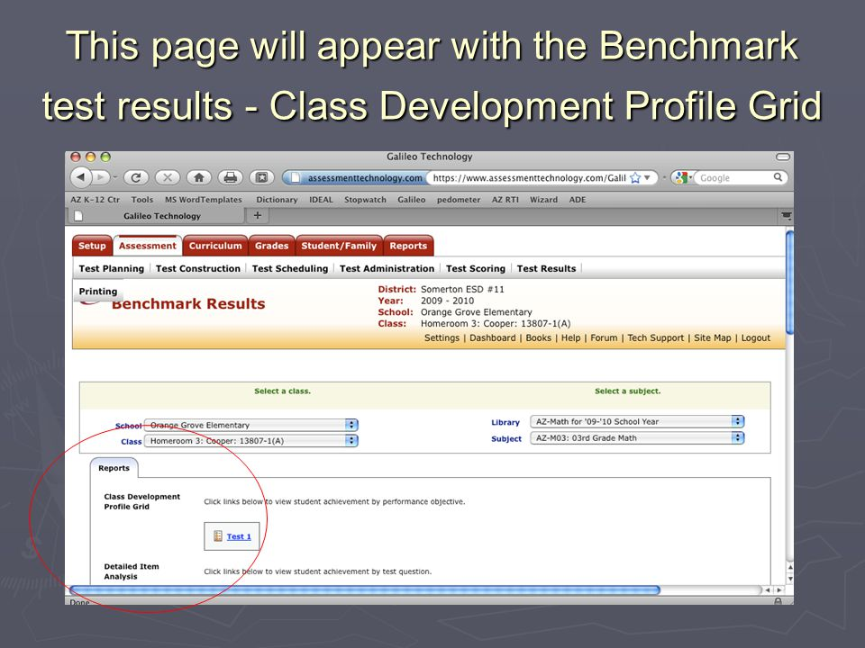 This page will appear with the Benchmark test results - Class Development Profile Grid