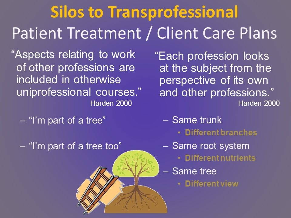 Silos to Transprofessional Patient Treatment / Client Care Plans Aspects relating to work of other professions are included in otherwise uniprofessional courses. – I'm part of a tree – I'm part of a tree too Each profession looks at the subject from the perspective of its own and other professions. –Same trunk Different branches –Same root system Different nutrients –Same tree Different view Harden 2000