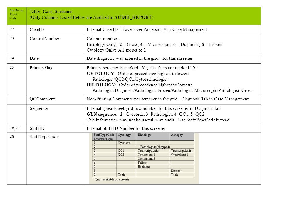 See Power Point slide Table: Case_Screener (Only Columns Listed Below are Audited in AUDIT_REPORT) 22 CaseIDInternal Case ID.