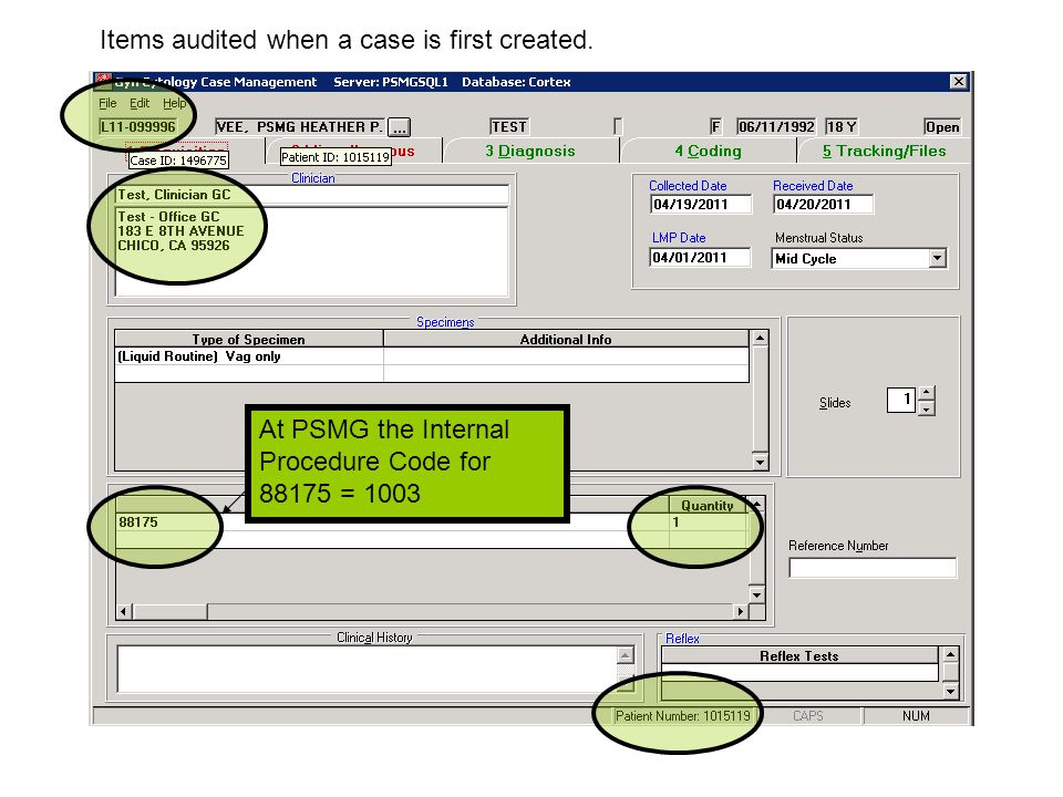 At PSMG the Internal Procedure Code for 88175 = 1003 Items audited when a case is first created.