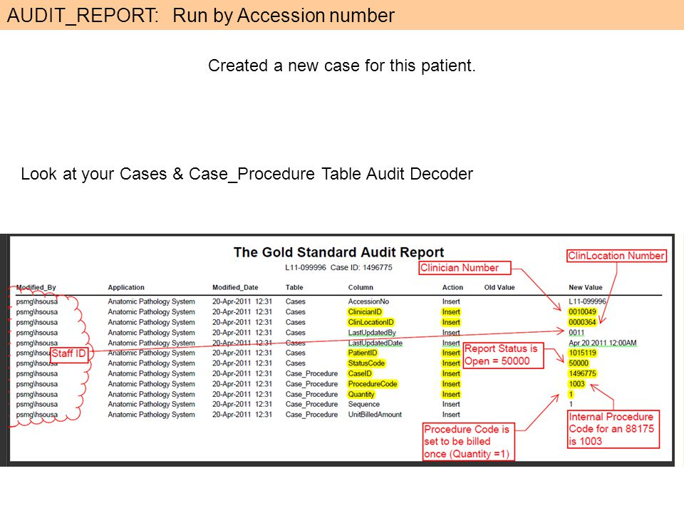 AUDIT_REPORT: Run by Accession number Created a new case for this patient.