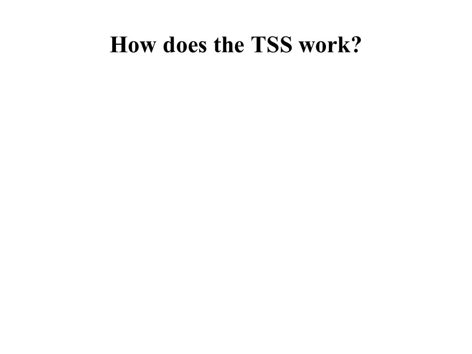 How does the TSS work?
