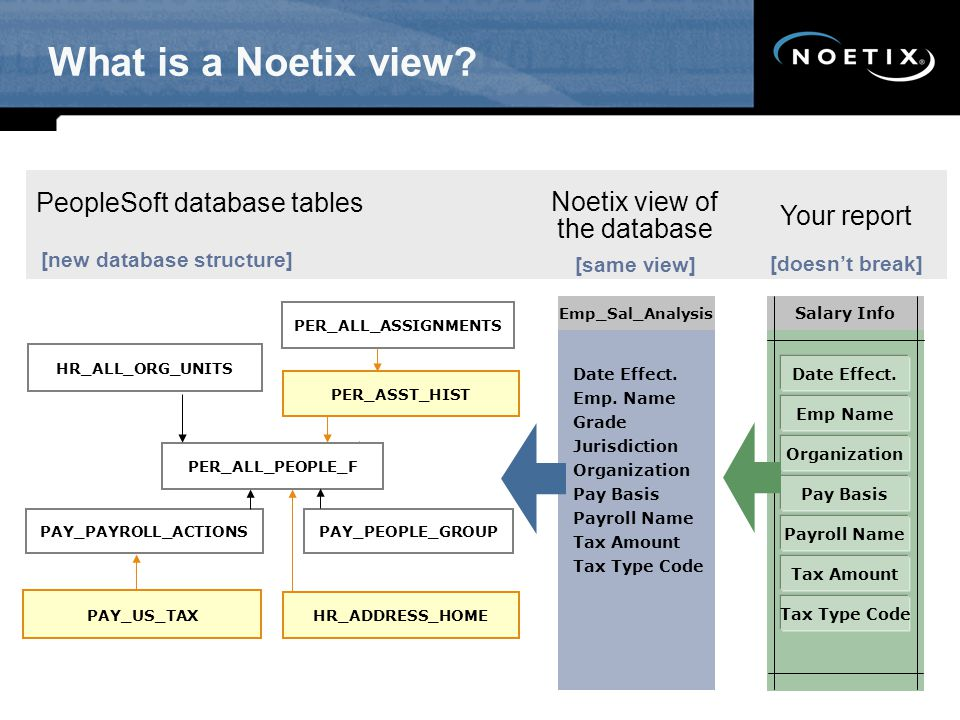 What is a Noetix view.