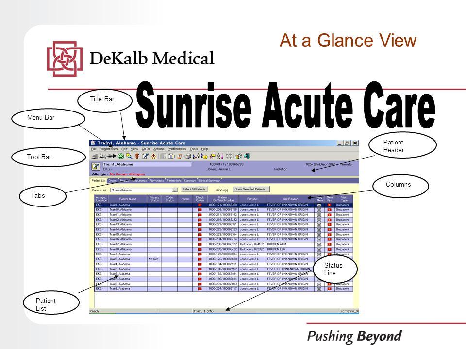 Title Bar Menu Bar Tool Bar Patient Header Tabs Patient List Status Line Columns At a Glance View